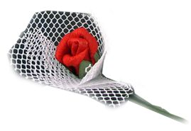 red rose in bouquet, also in pink